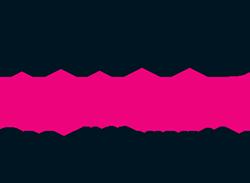 RNIB Charity Logo